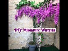 Todays video, I will show you how to make an easy wisteria plants and flowers using crepe paper :D Enjoy! Faux Flowers, Diy Flowers, Wisteria Plant, Tissue Paper Flowers, Mini Plants, Miniature Plants, Miniture Things, Bougainvillea, Planting Flowers