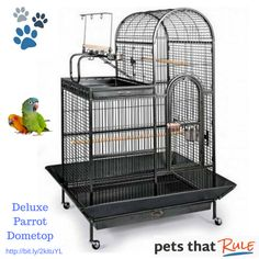 #Petsthatrule love the roomy Deluxe Parrot Dometop!