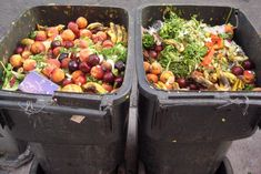 There is a lot of food waste with fresh foods.