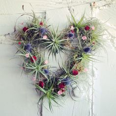 Air plant wreath - crafted using live spanish moss, tillandsia and hand dried seasonal flowers