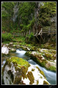 Romania Huda lui Papara bridge cave Trascau Apuseni mountains Carpathians eastern europe caves Visit Romania, Hidden Places, Beautiful Places To Visit, Bulgaria, Hungary, Bridges, Ukraine, Tours, Dreams
