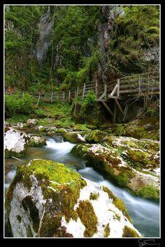 Romania Huda lui Papara bridge cave Trascau Apuseni mountains Carpathians eastern europe caves