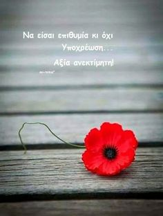 Greek Quotes, Meant To Be, Love You, Wisdom, Mood, Beautiful, Sayings, Life, Smileys