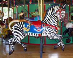 Memphis Zoo Carousel  Outside Row Zebra © Bette Sue Gray