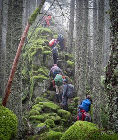 The 13 Most Grueling Hiking Trails In America. This is Ruckle Ridge Loop in Oregon lol @ this compilation of deadly hiking adventures Oh The Places You'll Go, Places To Travel, Travel Destinations, Places To Visit, Oregon Road Trip, Oregon Travel, Oregon Hiking, Backpacking Oregon, Oregon Camping