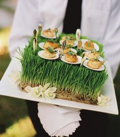 Catering Presentation: Food For Thought Looking for wedding food to wow your guests? Whether you want food stations, a food truck, a buffet or a sit-down menu, you can have a wedding to be proud of. Tips for hiring an amazing caterer. Catering Display, Catering Food, Canapes Catering, Catering Ideas, Catering Design, Catering Recipes, Catering Events, Party Catering, Cocktail Wedding Reception
