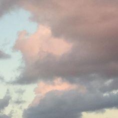 Glorious winter sky. #mossmountainfarm #sharethebounty #naturalbeauty #seearkansas #comeseeus