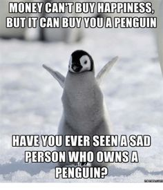 Dump A Day Beware Of Funny Animals With Captions 22 Pics - Penguin Funny - Funny Penguin meme - - Dump A Day Beware Of Funny Animals With Captions 22 Pics The post Dump A Day Beware Of Funny Animals With Captions 22 Pics appeared first on Gag Dad. Animal Captions, Funny Animals With Captions, Cute Funny Animals, Funny Cute, Funniest Animals, Super Funny, Penguin Love, Cute Penguins, Funny Penguin