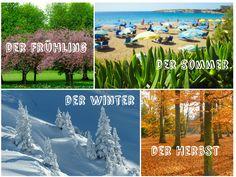 Die Jahreszeiten: der Frühling, der Sommer, der Herbst und der Winter in einer Collage.