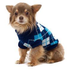 UrbanPup Blue Argyle Sweater (Small - Dog Body Length: 10... https://www.amazon.com/dp/B003EMGEMO/ref=cm_sw_r_pi_dp_x_vJghyb3P22D53
