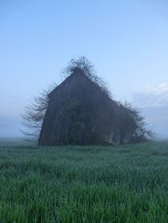 This barn is creepy but beautiful. Old Buildings, Abandoned Buildings, Abandoned Places, Abandoned Castles, Country Barns, Old Barns, Photo Post Mortem, Images Murales, Foto Art
