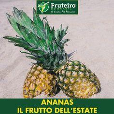 Wild Guava//Ananas aspro Guava più piccolo Guava MOLTO RARO 10 Semi migliori