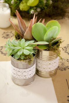 Tin-can succulents. Cherie's already collecting cans! Tin Can Centerpieces, Succulent Centerpieces, Wedding Centerpieces, Table Decorations, Diamond Decorations, Centrepieces, Shed Wedding, Bush Wedding, Wedding Table