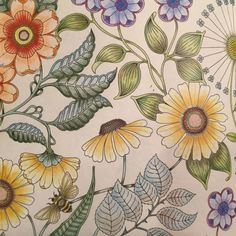 Johanna Basford | Colouring Gallery - Faber Castell and Staedler