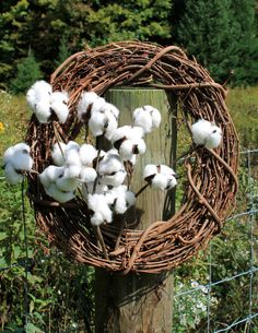 SHIPS FREE 3 12 Cotton Boll Stems Natural Cotton by TheWreathShed