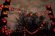 Halloween Season, Halloween 2020, Spooky Halloween, Vintage Halloween, Happy Halloween, Halloween Party, Halloween Decorations, Outdoor Halloween, Fall Wallpaper