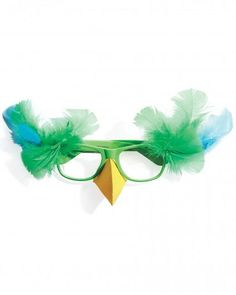 DIY Animal Costume : DIY Parrot Glasses  :  DIY Halloween