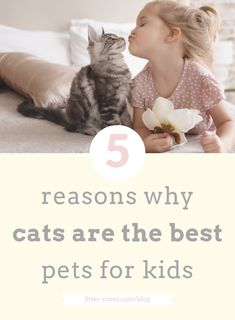 We're taking a stance: Cats are the best pets for kids! Cats have a lot to offer children, both in friendship and in life lessons. Best Dogs For Kids, Catch The Cat, Litter Robot, Calming Cat, Getting A Kitten, Animal Attack, Loyal Dogs, Pet Day, Cat Friendly Home