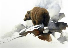 Grizzly bear - watercolor painting by Morten E. Bear Paintings, Wildlife Paintings, Wildlife Art, Bear Watercolor, Watercolor Animals, Watercolor Landscape, Painting & Drawing, Watercolor Paintings, Watercolours