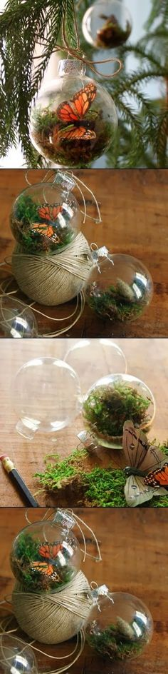 What you'll need:   - clear glass ornaments  - dried moss  - twine  - pencil  - q-tips  optional- twigs, butterflies, feathers etc...
