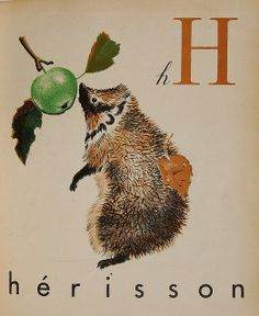 Hedgehog Hérisson ABC designed by Feodor Stepanoich Rojankovsky, 1937