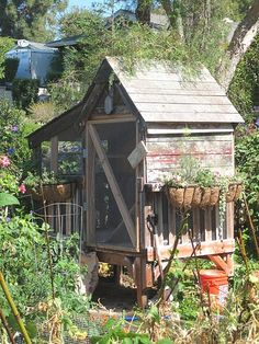 Another coop too cute for chickens. I want a chicken coop like these. Cute Chickens, Chickens And Roosters, Raising Chickens, Chickens Backyard, Cute Chicken Coops, Potting Sheds, Hen House, Farm Life, Homesteading