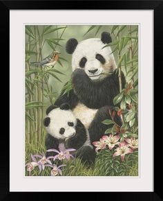 GreatBIGCanvas Panda Paradise by William Vanderdasson Photographic Print with Black Frame 18 x 24 ** Visit the image link more details. Note:It is affiliate link to Amazon.