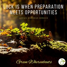 - #Luck is when Preparation Meets #Opportunities - Lucius Annaeus Seneca  #GreenWhereabouts #IspirationalQuotes #Quotes #nature #woods #luckyclover #fourleafclover #goodluck #green #art #fourleafclovers #outdoors #dreamcatcher #cool #amazing #cloverart