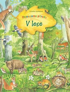 Mein erstes Wimmelbuch - Im Wald by Christine Henkel, available at Book Depository with free delivery worldwide. Art Drawings, Illustration Art, Illustrations, Horror, Handmade Gifts, Reading, Painting, Fictional Characters, Things To Sell