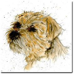 Monty the Border Terrier Dog Card by British artist Sarah Boddy Terrier Dogs, Terriers, Office Dog, Chicken Humor, Funny Chicken, Up Dog, Dog Cards, Border Terrier, Brown Dog