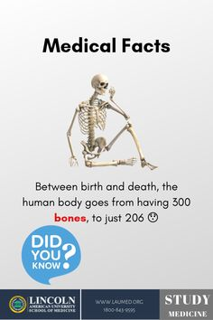 Between birth and death, the human body goes from having 300 bones, to just Public DomainA quarter of your bones are in your feet – and, bonus, babies have 94 more bones than adults do. Hearts can beat outside of their bodies. Medical Facts, Medical News, Medical Science, Medical School, Biology Facts, Human Body Facts, Birth And Death, Did You Know, Curriculum