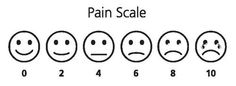 eula biss essays pain scale