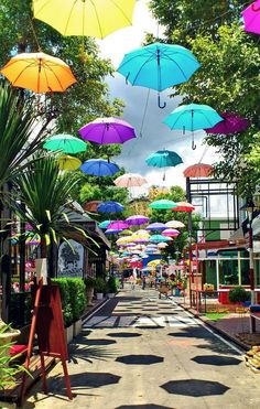 Market place, Chang Mai, Thailand