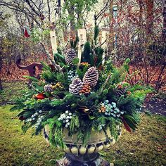 ready for Halloween! Christmas Open House, Southern Christmas, Christmas Porch, Christmas Holidays, Christmas Garden, Outdoor Christmas Planters, Christmas Greenery, Outdoor Christmas Decorations, Outdoor Decor