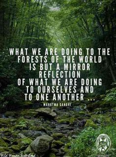 Searching for some inspiration to start being more environmentally friendly on Earth Day, April 2020 and everyday? We all need motivation, so we've gathered the best environmental quotes about saving the planet so that you can do your part. Save Mother Earth, Save Our Earth, Mother Earth Quotes, Environment Quotes, Good Environment, Motivation Positive, Need Motivation, Our Planet, Save The Planet