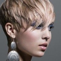 cropped pixie, #shorthair
