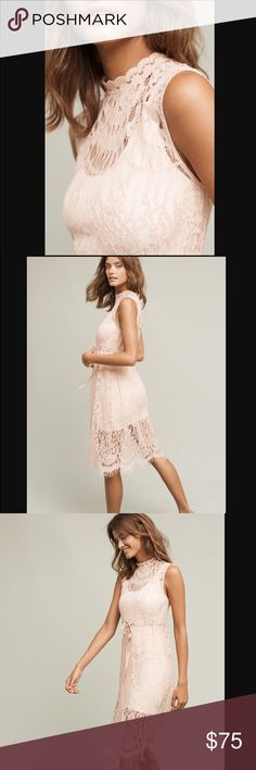 """Anthropologie lili's closet slip NWT. Beautiful and high quality lace. Romantic color. No flaws. 39"""" long from shoulder. See thru. Price is firm unless bundle. No trade no low ball on this please. Anthropologie Dresses"""