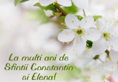 La Multi Ani Constantin, Sf Constantin, Happy Name Day, Happy Birthday, Wallpaper, Google, Decor, Style, Doilies