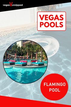 Discover the best pools in Las Vegas for From lazy rivers, to wave pools, to normal resort hotel pools, have fun relaxing in the sun in Vegas now! Best Pools In Vegas, Best Las Vegas Hotels, Las Vegas Tips, Vegas Pools, Las Vegas Vacation, Las Vegas Restaurants, Las Vegas With Kids, Pool Photography, Flamingo Pool