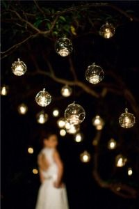 The new fad in Hanging lights!