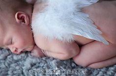 Newborn Angel picture