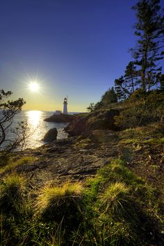Vancouver Island, one of the best places I've ever been to... Love and miss it so much...