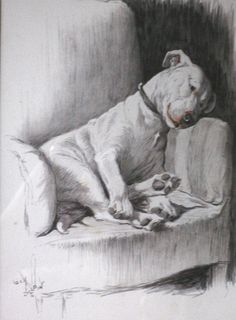 cecil aldin signed print | Bull terrier Signed mounted 1930s Cecil Aldin Cracker as a silly ass ...