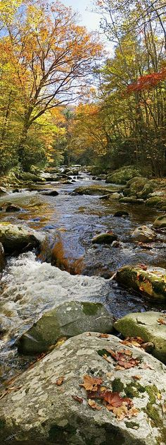 Flow Of Autumn, Big Creek in the Great Smoky Mountain National Park.
