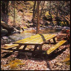 River picnic.