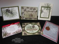 Ornamental Pine Stamp Set_Stamp of the Month Kit