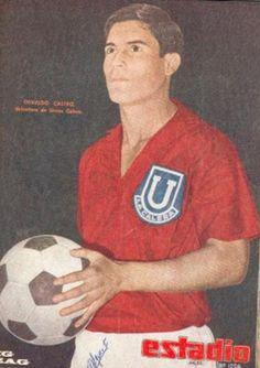 Osvaldo Castro Pata Bendita (Chile) 351 goles, en su carrera futbolistica, Unión La Calera (1965-1968), Deportes Concepción (1969-1971), Club América (1972-1975), Club Jalisco (1975-1979), Deportivo Neza (1979-1981), Atlético Potosino (1981-1982), Pumas UNAM (1983-1984)