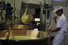 """""""Um mundo de queijos"""" by @360meridianos"""