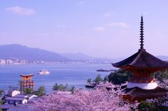 Miyajima Sakura by shintax on 500px