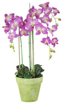 Phalaenopsis Orchids in Pot, 3 Stems, Orchid traditional artificial flowers